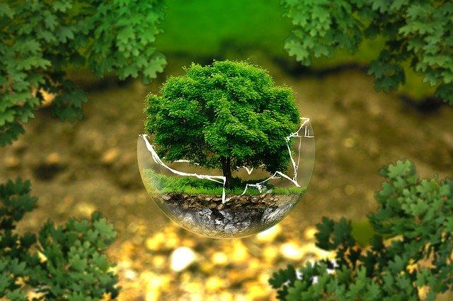 Grupo de Derecho Ambiental | Uniandes