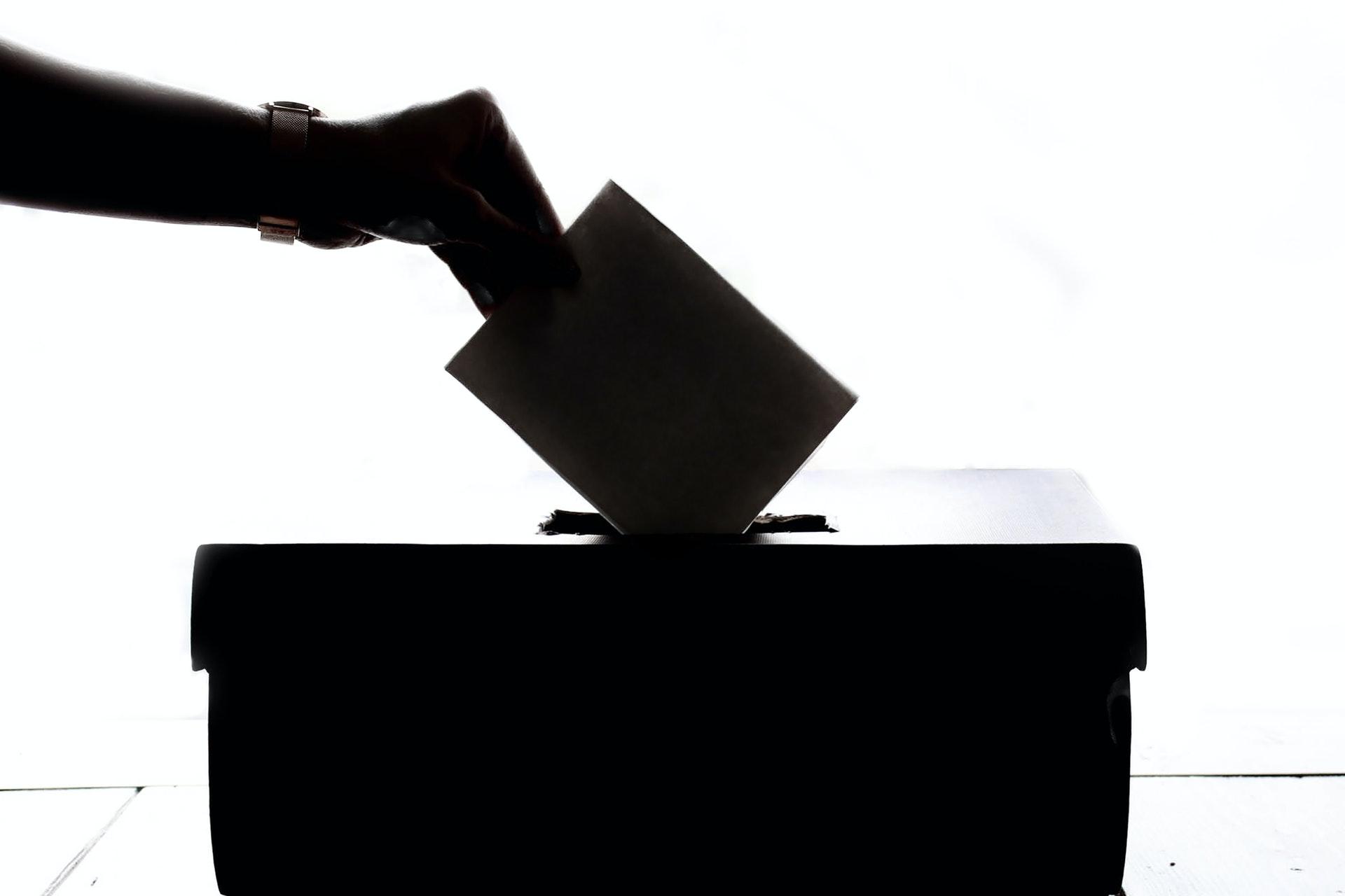 Semillero Derecho Electoral