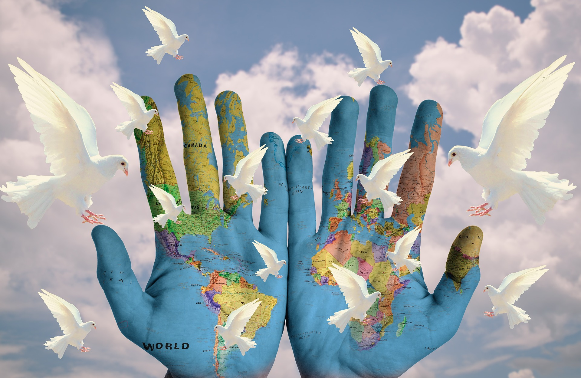 Semillero Tierras y Paz