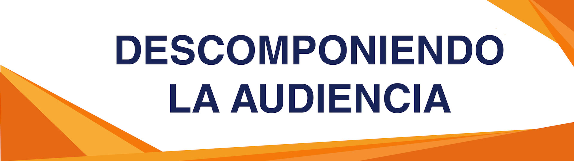 Descomponiendo-la-audiencia