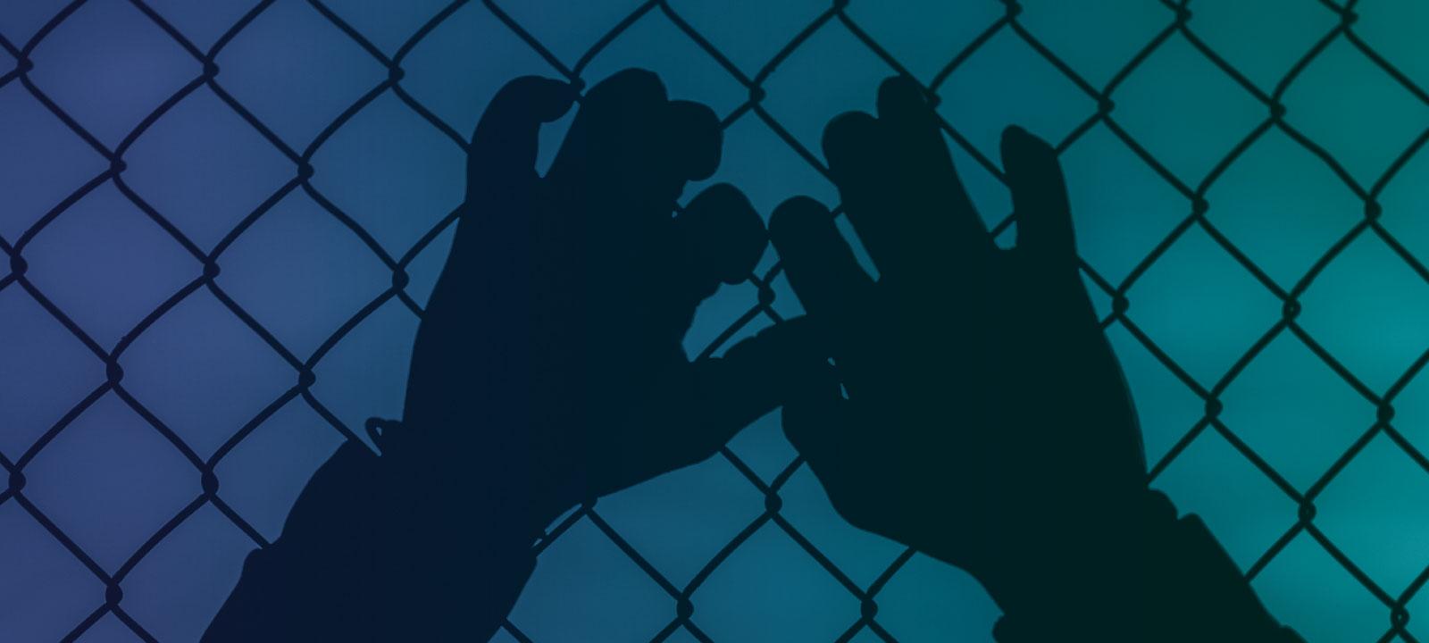 La responsabilidad penal y el enjuiciamiento de las personas con enfermedades mentales e inimputables