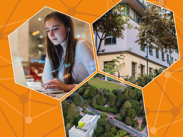 Escuela Internacional de Verano 2021