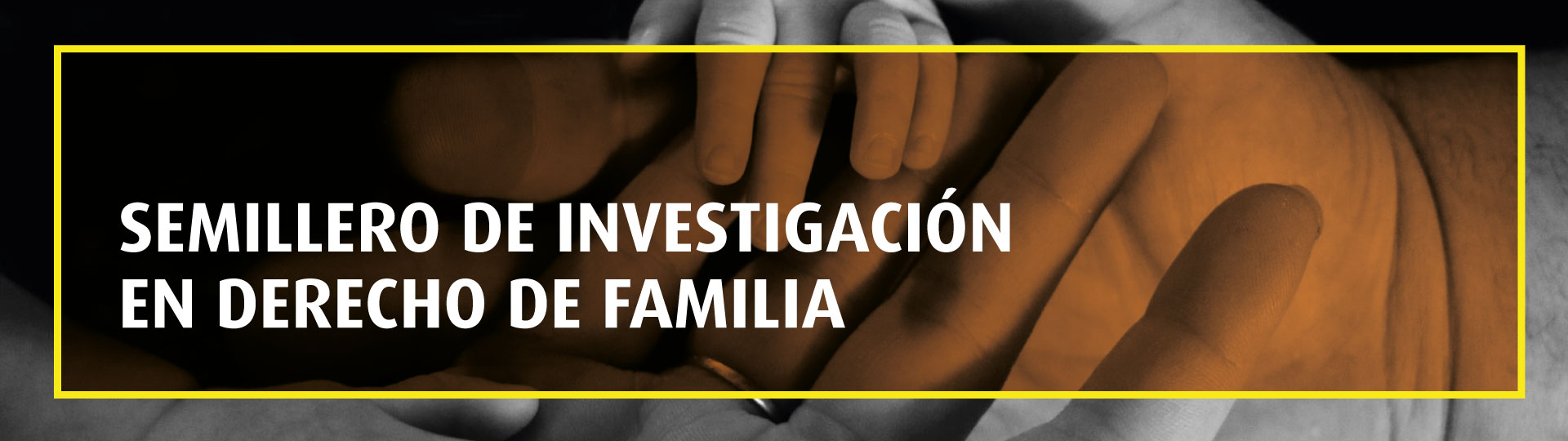 Semillero de Investigación en Derecho de Familia   Uniandes
