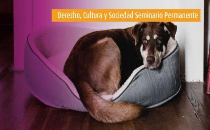 Los derechos de los animales | Derecho, Cultura y Sociedad - Seminario Permanente